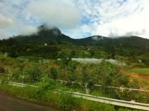 mit dem Bus von DaLat nach HCMC